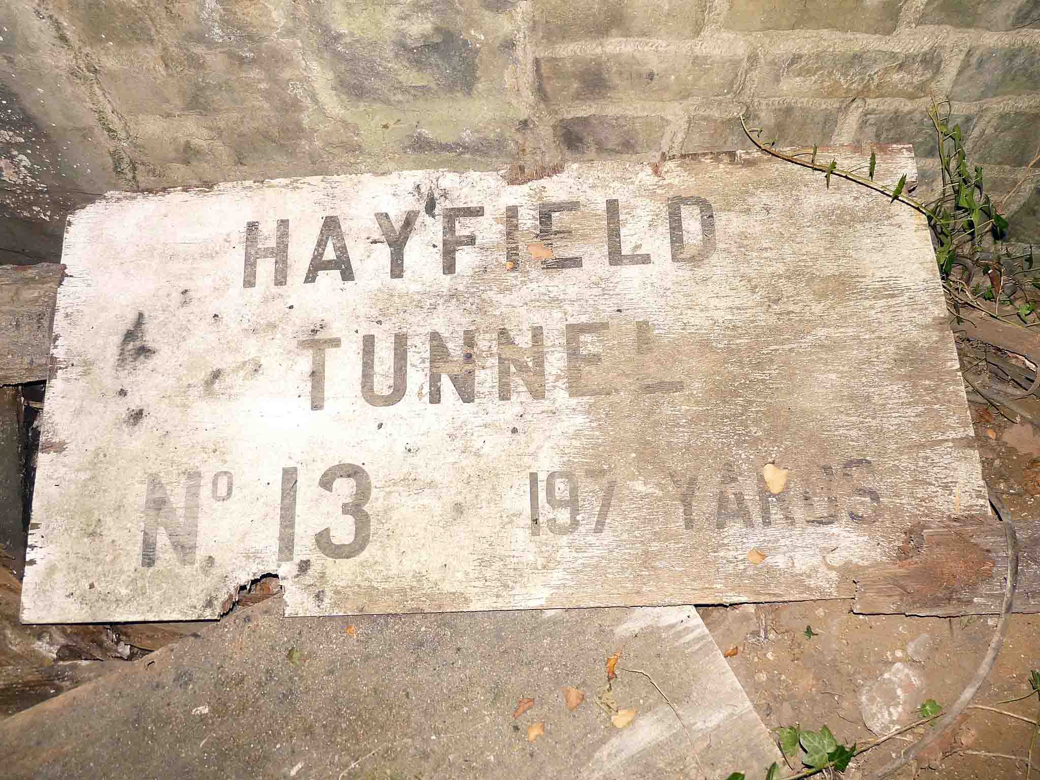 hayfield 01 - A mystery DMU tunnel!